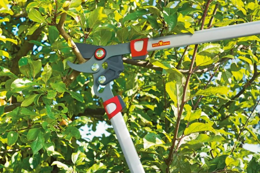 Oksalõikur vaheliti teraga Power Cut* RR 550, Wolf Garten