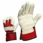 Gloves_230