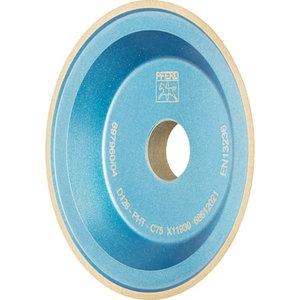 Deimantinis diskas 100x2x10x20mm D126 PHT C75 12V9, Pferd