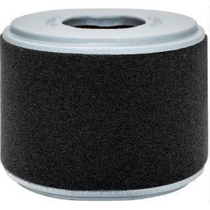Filtras oro GX240, GX270, Honda
