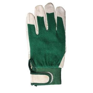 Gloves goat skin, green cotton back, 8