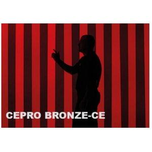 Metināšanas aizskaru lameles 300x2mm, bronzas, Cepro International BV