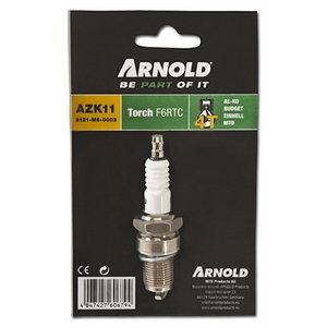 Süüteküünal kõikidele MTD ThorX mootoritele F6RTC  BPR6ES, Arnold