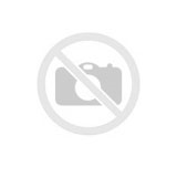 Roof ladder 10 steps 2,8 m 4095, Hymer