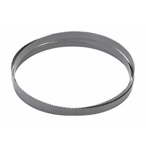 Lintsaelint metallile 3770x34x1,1mm Vario 6/10 TPI BiFlex, Bernardo