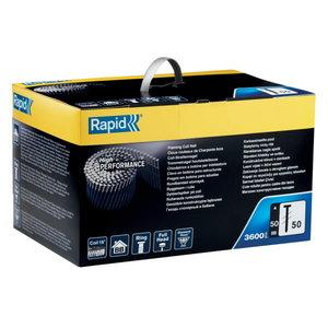 Naglas 50/50mm ruļļos rievotas standarta 3600 gab., Rapid