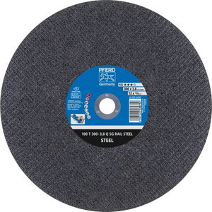 Disks 300x3,8mm A24Q SG-RAIL 25,4 100 T, Pferd