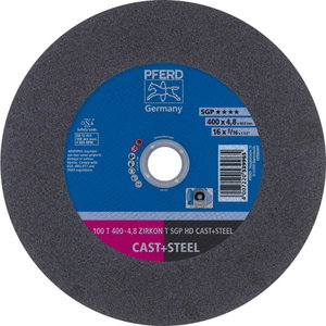 Disks 100 T400-4,8ZA24T SG-HD 40,0, Pferd