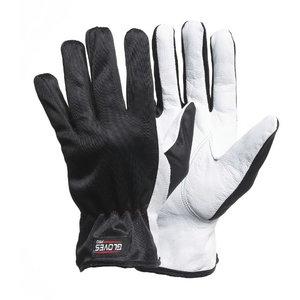 Kindad Dex1, polüester/kitsenahk 10, , Gloves Pro®