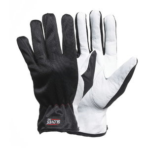 Cimdi, Dex1, polyester/goat leather 11, Gloves Pro®