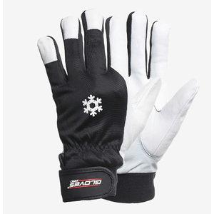 Kindad, kitse pealisnahk, nailon käeselg, MECH-WINTER 10, Gloves Pro®
