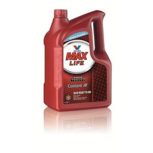 MAXLIFE COOLANT 50/50 ready to use coolant 5L, Valvoline