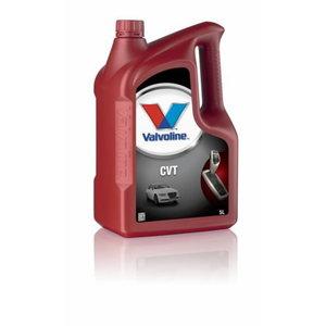Automaatkastiõli  CVT 5L, VALVOLINE