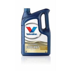 MULTIVEHICLE COOLANT 50/50 ready to use 5L, Valvoline