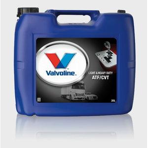 Automatinių transmisijų alyva  LIGHT&HD ATF/CVT 20L, Valvoline