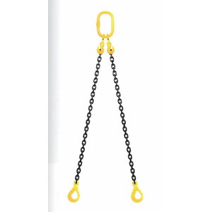 Chain sling 2-prong, G 8, with case, Certex