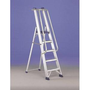 Platform ladder REGINA SPECIAL 6 steps, Svelt