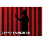 keevituskardina riba 300x2mm, pronks Cepro, Cepro International BV