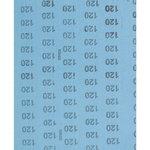 Lihvleht 230x280mm A 120 BG BL, PFERD