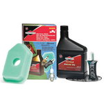 TUNE-UP KIT CLASSIC/SPRIN, Briggs&Stratton