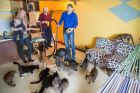 Stokker tegi loomade turvakodule vahva üllatuse