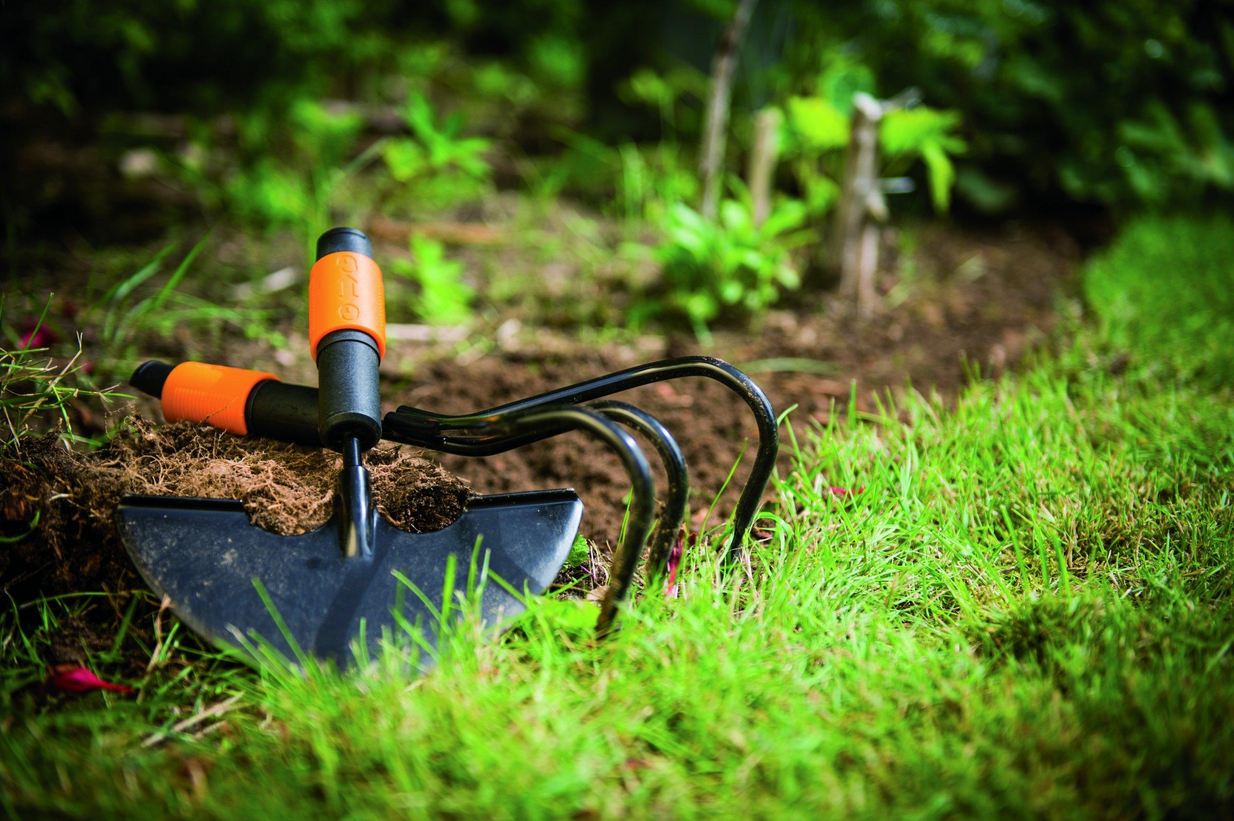 Dāvana dārzniekam
