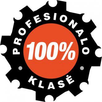 Profesionali klasė