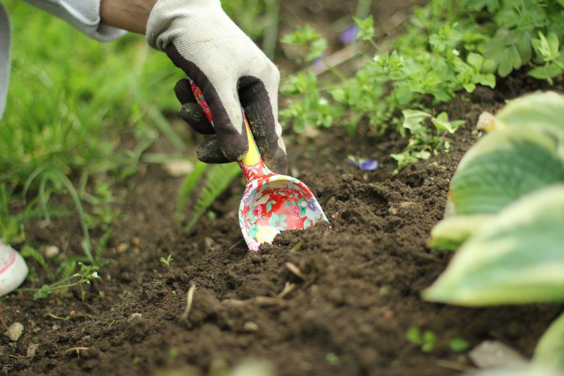 TOP 5 aiatööriista