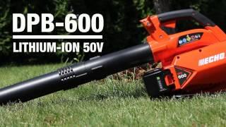 ECHO DPB-600 akumuliatorinis pūstuvas