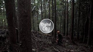 ECHO skaitmeninė užvedimo sistema - Digital CDI